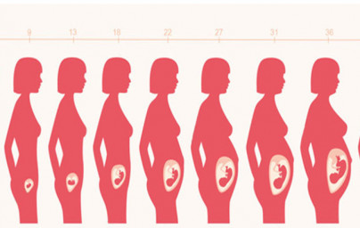 42. teden nosečnosti