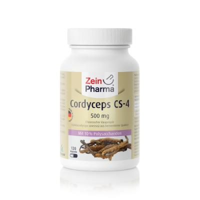 Cordyceps gobe