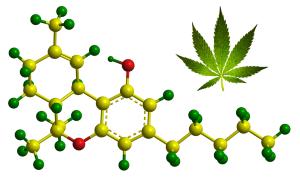 Test za THC